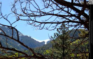 Mountains Framed By Tree Branches by DamselStock