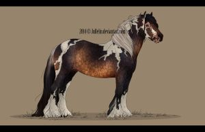 Gypsy Vanner Auction #3 ENDED by Jullelin