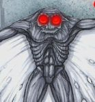 Mothman picture 2 by orderoftheknot