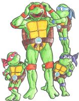 Tiny Turtle Tots B2P79 Colored by pedlag