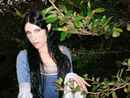 Arwen Undomiel cosplay by Lyriel-Rangiku
