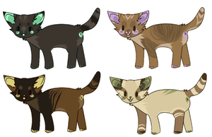 [d] cats for sale round 3 - 1 LEFT by chisey