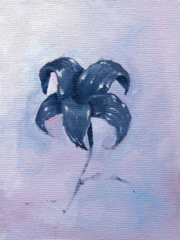 Blue Flower by pachryso