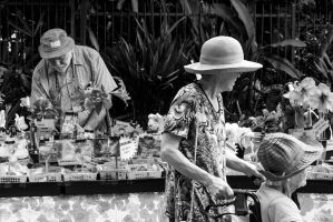 Carnival on Collins 010913 0047 by Grant-Booysen