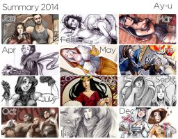 Summary - 2014 by Naeviss