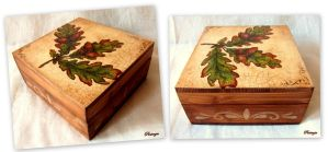 Decoupage box by pinterzsu