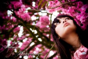 Cherry Blossom Princess II by Nitemare-Photography