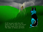 Praise You in This Storm by BoltsBiggestFanEVER