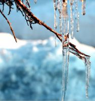 Icicle by Chessta