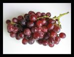 Red Grapes No. 1 by afarland-stock