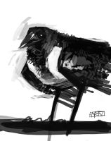 crow by shanyar