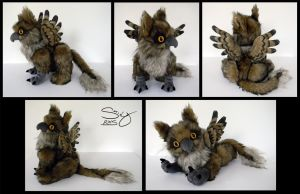 Gryphon Fledgling by SarityCreations