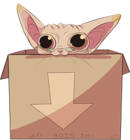 I has a box by Rodent-blood
