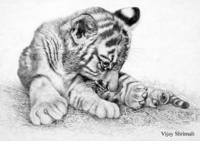 tiger cub by vijayshrimali-art