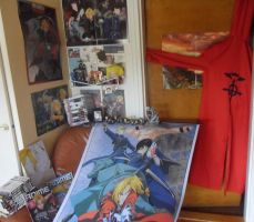 Some of my Fullmetal Alchemist collection by EwiZew
