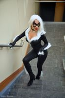 Black Cat: Allure by MomoKurumi