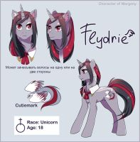 Flydrie reference 2015 by Margony