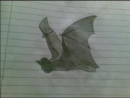 my flying bat by orcalover165
