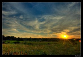 HDR - Sunset at Wilanow Fields by adamsik