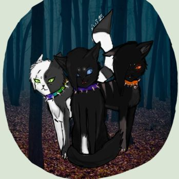 The 3 Cats Of BloodClan by ZeR0C0nDuCt