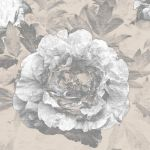 wallpaper peony by psychoticbenevolence