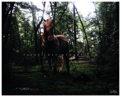 With Grace by Aspasia-Project
