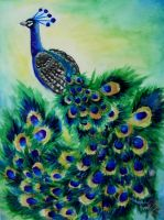 Peacock by jeanlee19