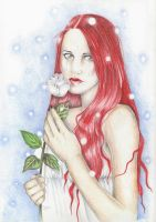 The white Rose. by Valentinadhara