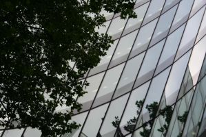 Glass And Nature by sutoll