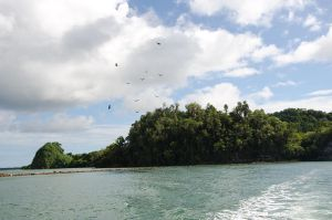 Los Haitises  National Park Dominican Republic 86 by FairieGoodMother