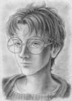 Harry Potter portrait by anla
