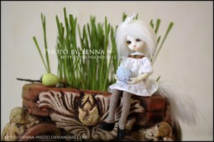 Have a Catty Easter by yenna-photo