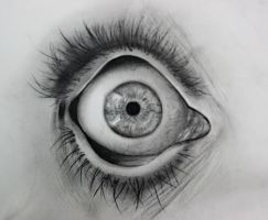Charcoal Eye by PurrrpleHaze