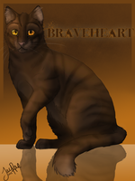 Braveheart of SkyClan by xxMoonwish