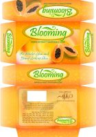 Blooming Packaging1 by freeagent08