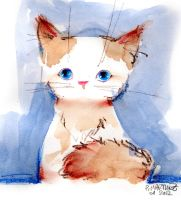 Kitty by Pierrick