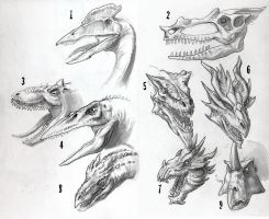Dragon Sketches 01 by DSil
