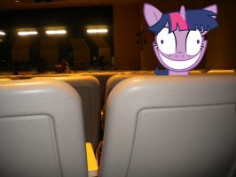 Twilight, Please Stop Staring At Me by ShowtimeandCoal