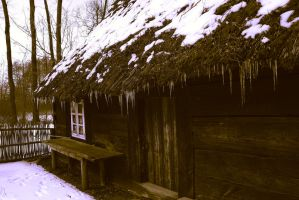 Endless Winter by Nusio21