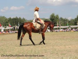 Hungarian Festival Stock 107 by CinderGhostStock