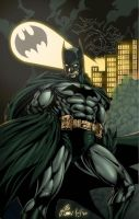 I'm Batman: Dark Knight Clrs by CdubbArt