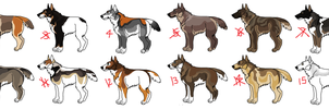 Dog adopts by KirinKade