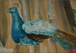 peacock painting by Skatoony