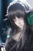 Tears of Blackthorn Julia 4 by Ringdoll