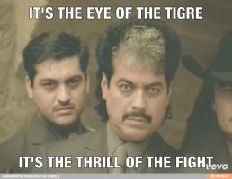 Eye Of The Tigres by AssassinJ2