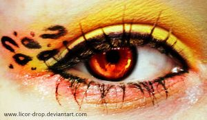 Leopard's eye by MisticLight3
