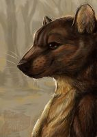 Marten Portrait by Rachez