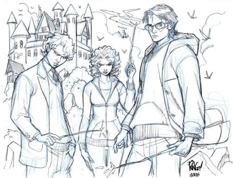 HARRY POTTER 2 by Wieringo