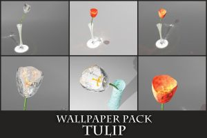 Tulip Wallpaper Pack by mikeandlex