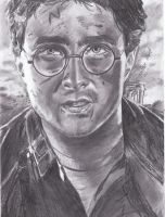 Harry Potter and the Deathly Hallows drawing by MelieseReidMusic